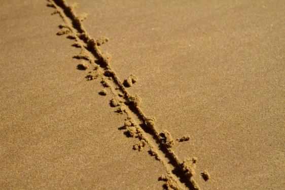 Line Sand